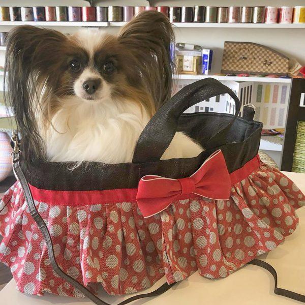 子犬・小型犬の入る畳縁バッグ