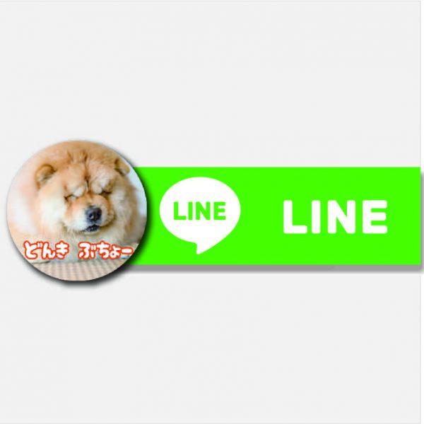 【D&C  PAD 畳犬 カフェ】LINE公式アカウントできました!